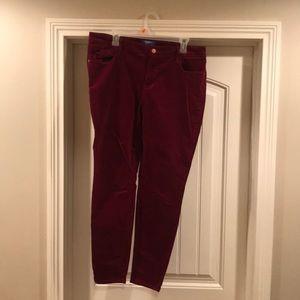 Velvet-feel pants